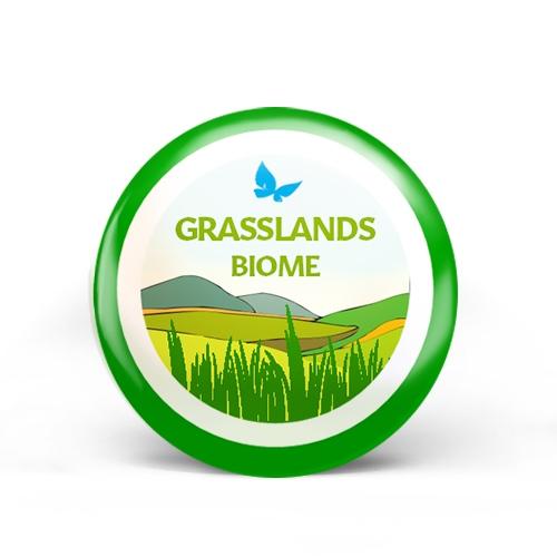 Grasslands Biome Badge