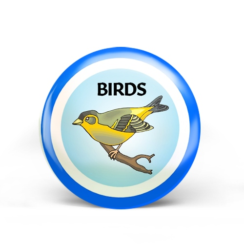 Birds Badge