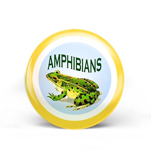 Amphibians Badge