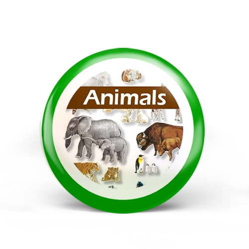 Animals (specific) Badge