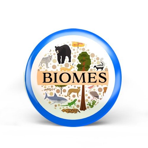 Biomes Badge