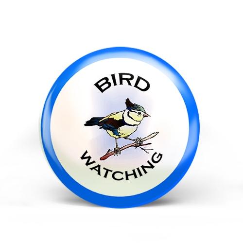 Bird Watching Badge