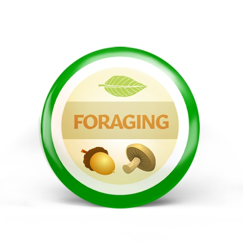 Foraging Badge